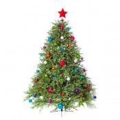 Коледни елхи/дръвчета (0)