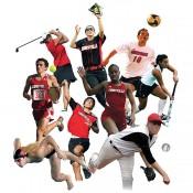Оферти за спорт и  свободното време (36)