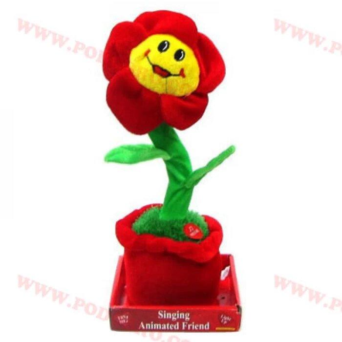 Пеещо и танцуващо цвете